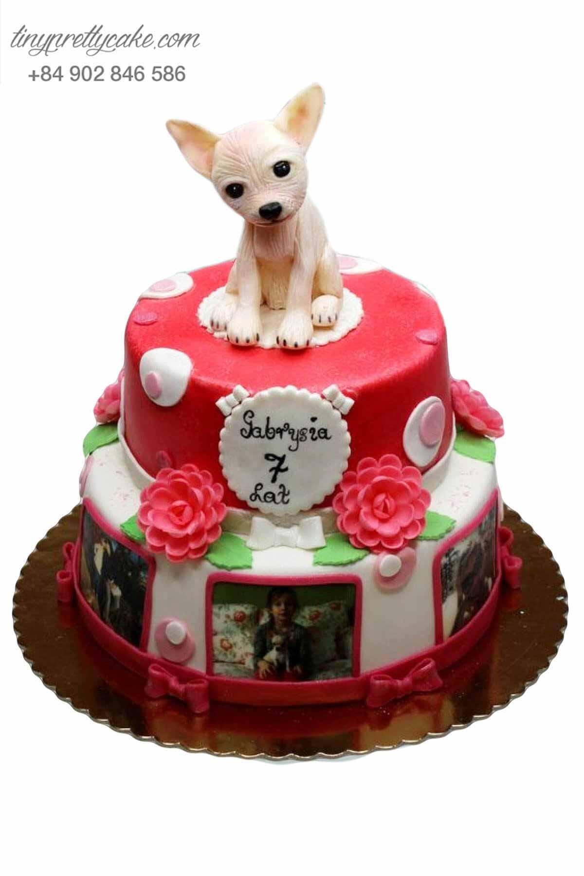 bánh sinh nhật cho bé yêu chó