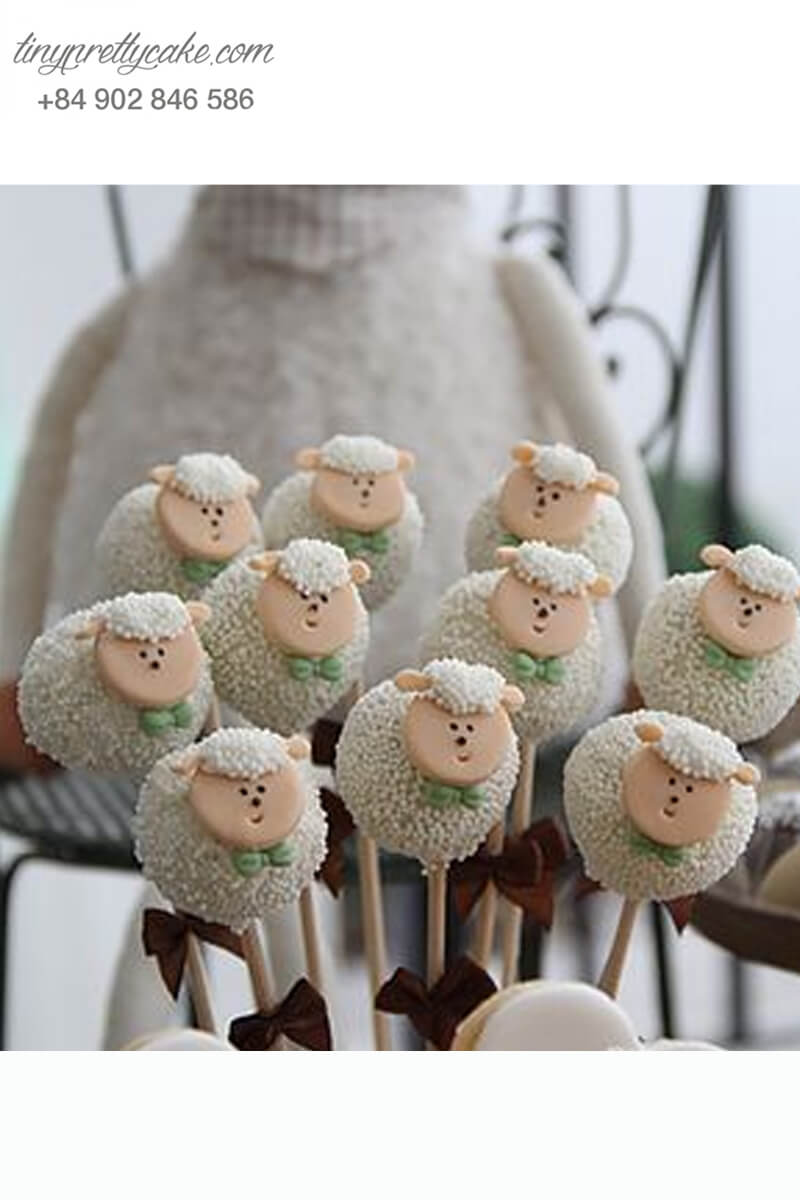Cake pop những chú cừu con ngơ ngác