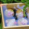 Hộp bánh trung thu hiện đại hoa nổi