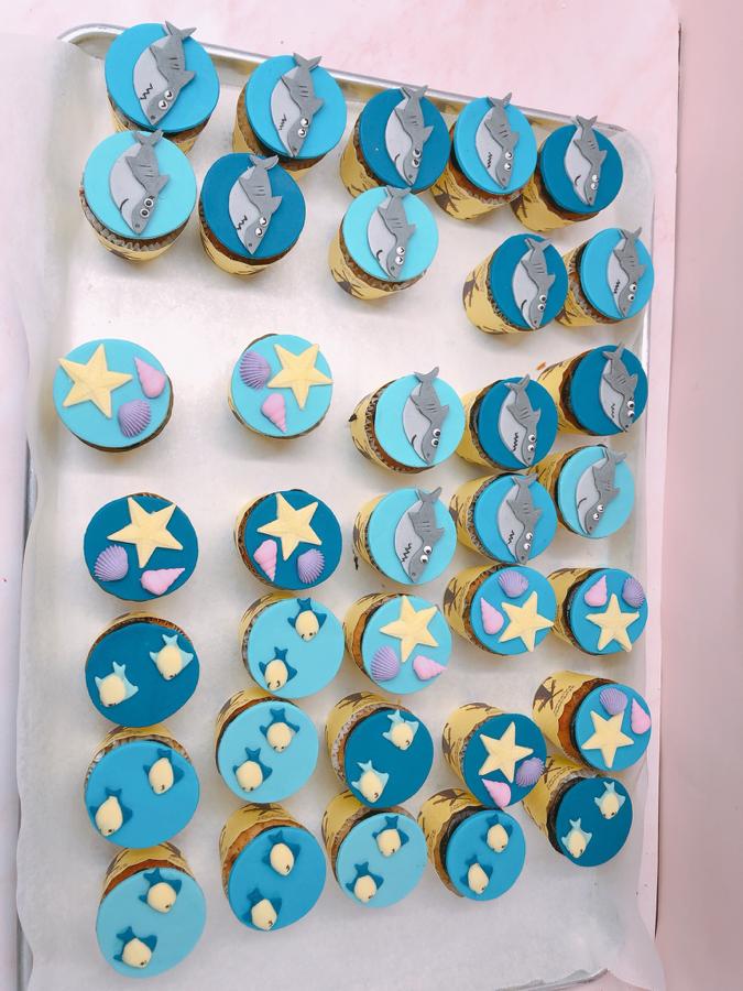31 cupcake chủ đề cá mập